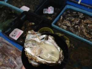 宮城 漁港